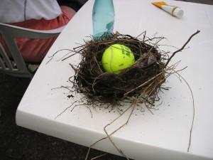 TennisballImNest2006