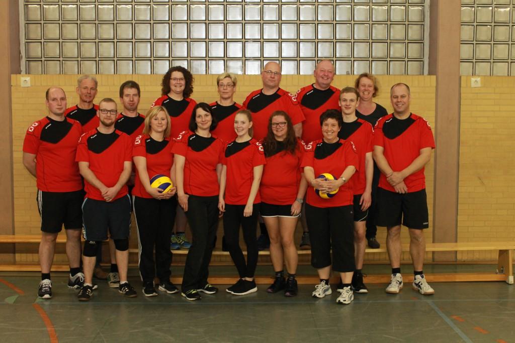 Volleyball_2015